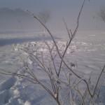 Winterimpressionen 2012: Erst war es noch nebelig und bedeckt ...