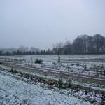 Winterimpressionen (aufgenommen im Dezember 2011)